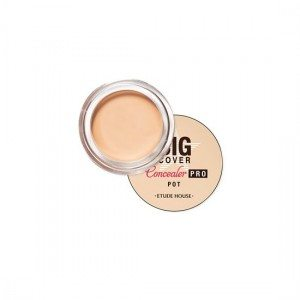 EtudeHouse Big Cover Pot Concealer Pro