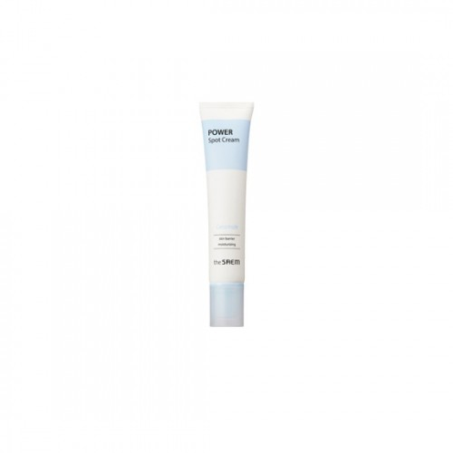 theSAEM Power Spot Ceramide Cream