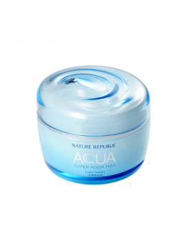 Nature Republic Super Aqua Max Fresh Cream