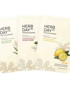 The FACE Shop HERB DAY 365 MASTER BLENDING MASK